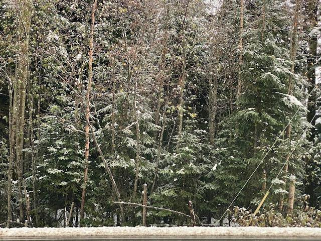 """Main Photo: 5867 CHIEF LAKE Road in Prince George: North Kelly Land for sale in """"CHIEF LAKE RD"""" (PG City North (Zone 73))  : MLS®# R2466938"""
