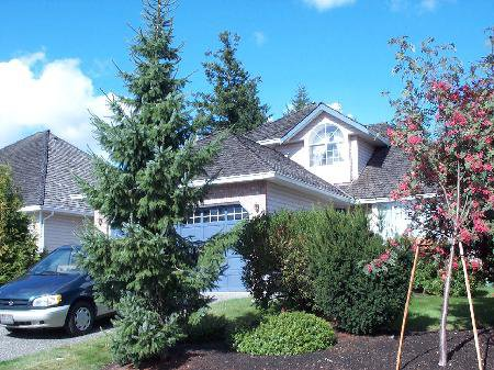 Main Photo: 16593 79A Ave Surrey: House for sale (Fleetwood Tynehead)  : MLS®# F2519906