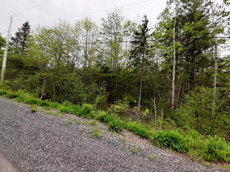 Main Photo: Lot A5 Aylesford Road in Lake Paul: 404-Kings County Vacant Land for sale (Annapolis Valley)  : MLS®# 202009532