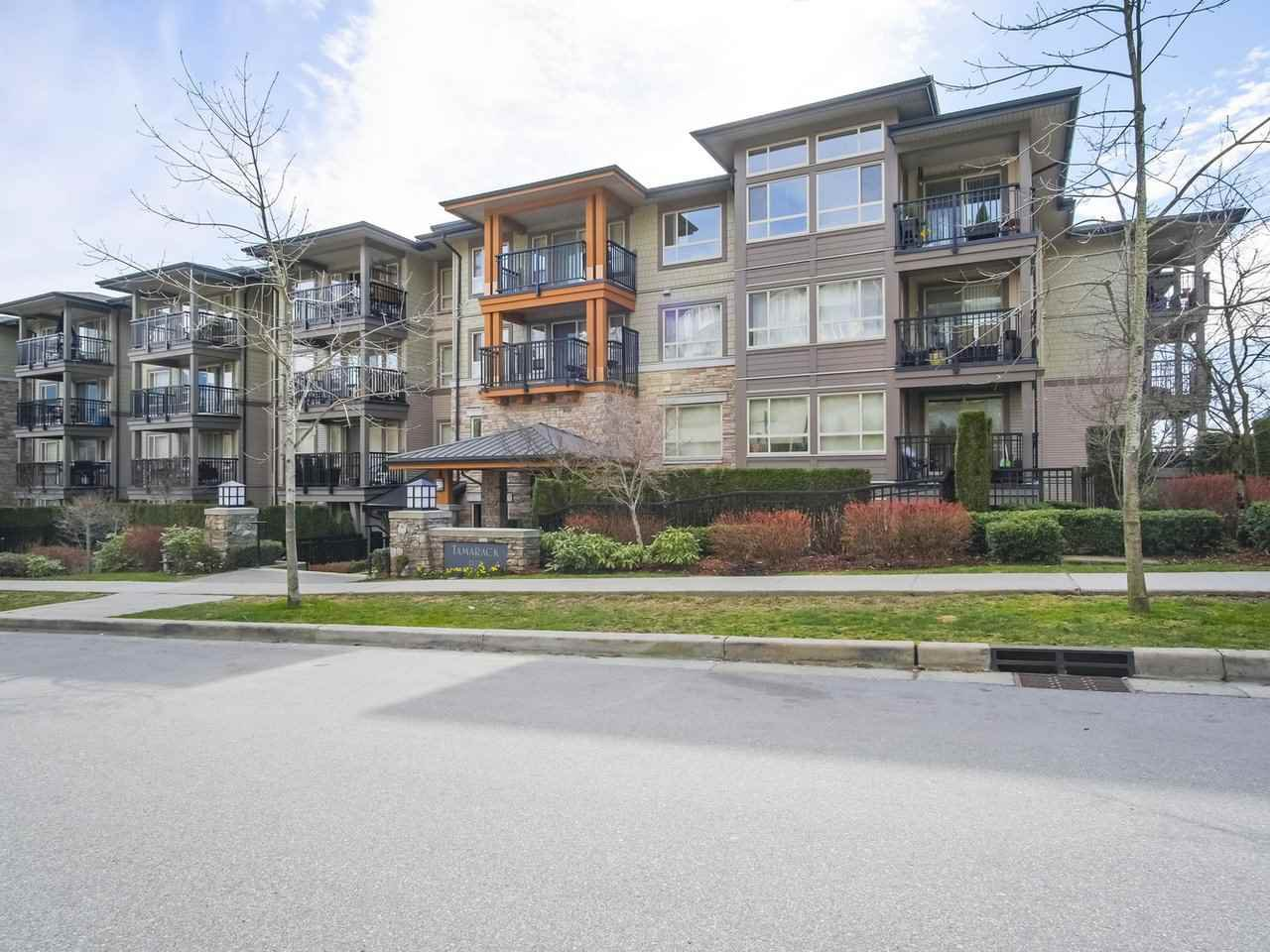 """Main Photo: 417 3178 DAYANEE SPRINGS Boulevard in Coquitlam: Westwood Plateau Condo for sale in """"Tamarack by Polygon"""" : MLS®# R2397922"""