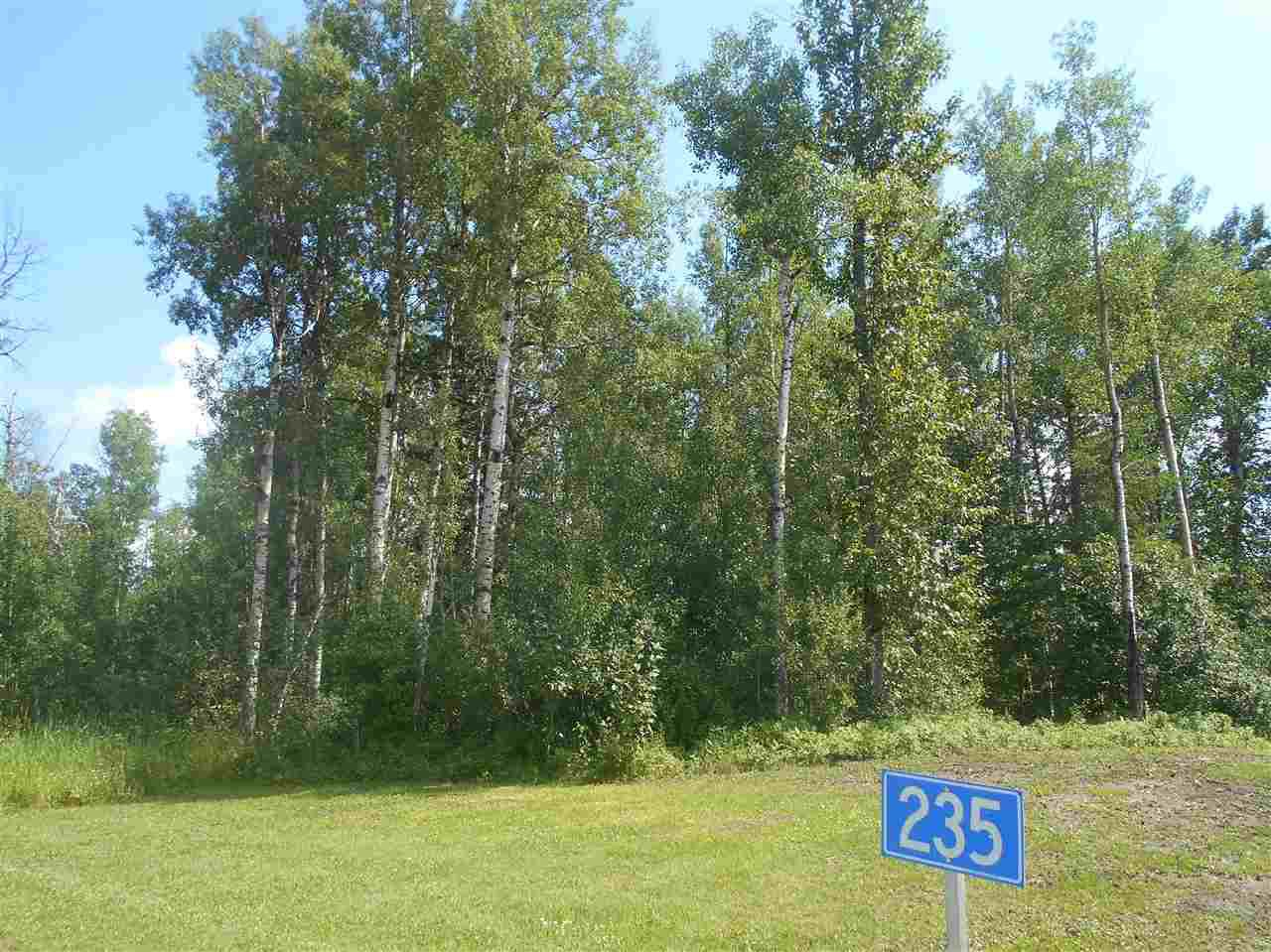 Main Photo: 235 49119 RR73: Rural Brazeau County Rural Land/Vacant Lot for sale : MLS®# E4208391
