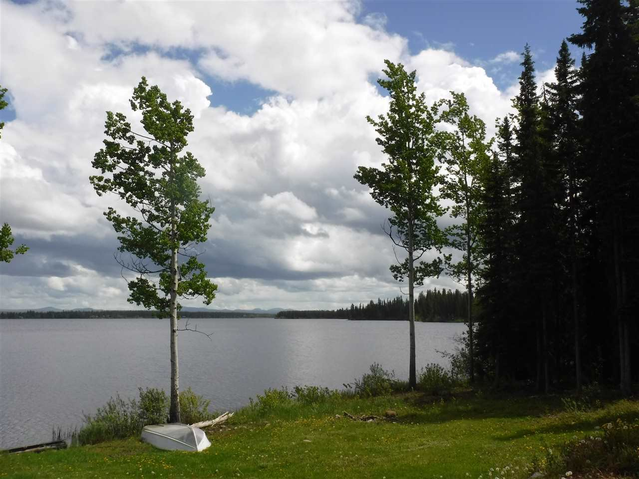 Photo 8: Photos: 3126 ELSEY Road in Williams Lake: Williams Lake - Rural West House for sale (Williams Lake (Zone 27))  : MLS®# R2467730