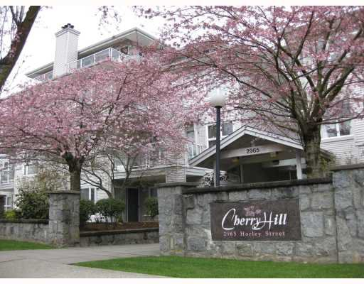 Main Photo: 403 2965 HORLEY Street in Vancouver: Collingwood VE Condo for sale (Vancouver East)  : MLS®# V760865