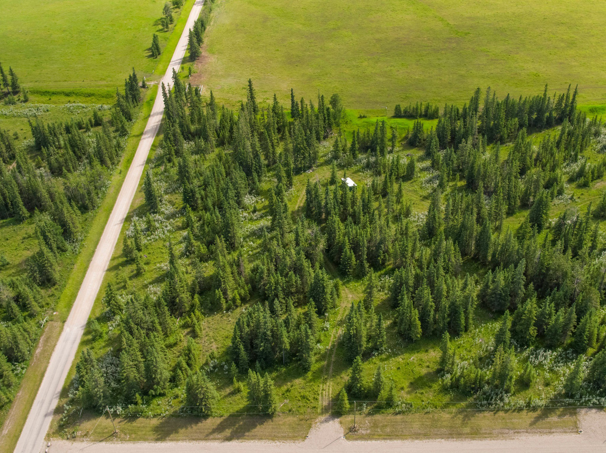 Main Photo: 3-34364 RANGE ROAD 42 in : Rural Mountain View County Land for sale (Mountain View)