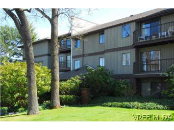 Main Photo: 305 1655 Begbie St in VICTORIA: Vi Fernwood Condo for sale (Victoria)  : MLS®# 512309