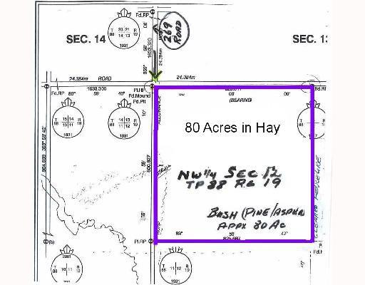 Main Photo: 269TH RD in Fort_St._John: Fort St. John - Rural W 100th Land for sale (Fort St. John (Zone 60))  : MLS®# N186476