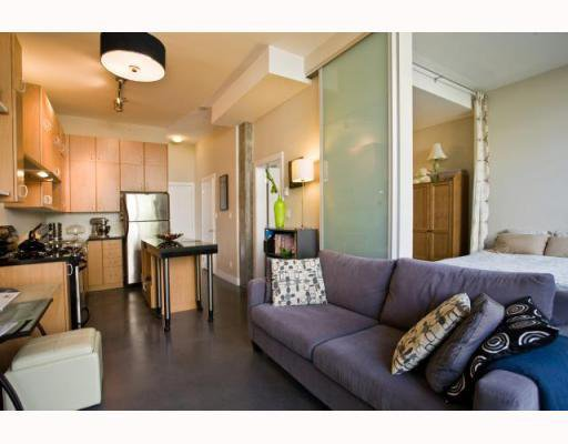 "Photo 8: Photos: 101 2635 PRINCE EDWARD Street in Vancouver: Mount Pleasant VE Condo for sale in ""Soma Lofts"" (Vancouver East)  : MLS®# V767580"