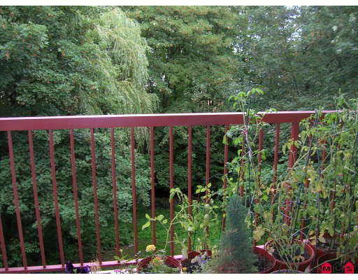 """Photo 10: Photos: 206 5776 200TH Street in Langley: Langley City Condo for sale in """"Glenwood Manor"""" : MLS®# F2918717"""
