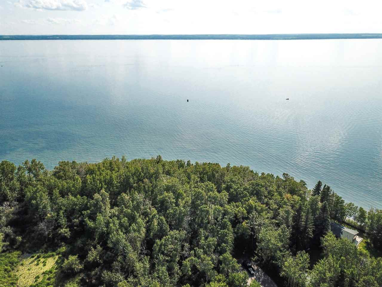 Main Photo: Pigeon Lake AB: Rural Wetaskiwin County Rural Land/Vacant Lot for sale : MLS®# E4195906