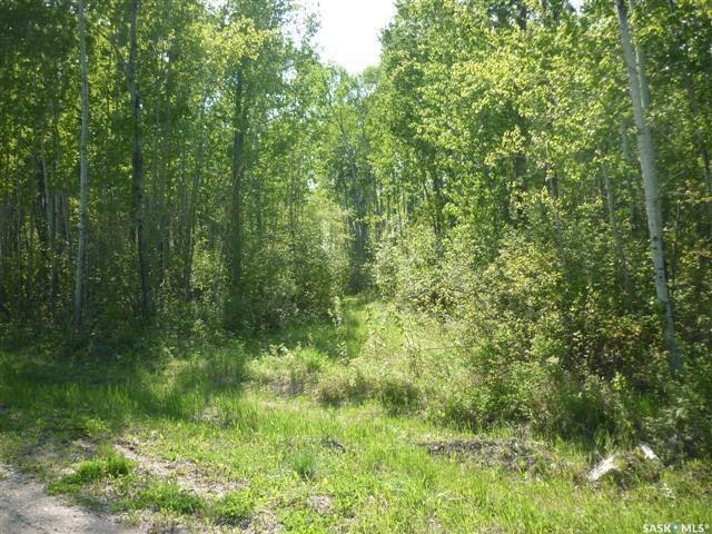 Main Photo: 4 Smits Avenue in Codette: Lot/Land for sale : MLS®# SK834454