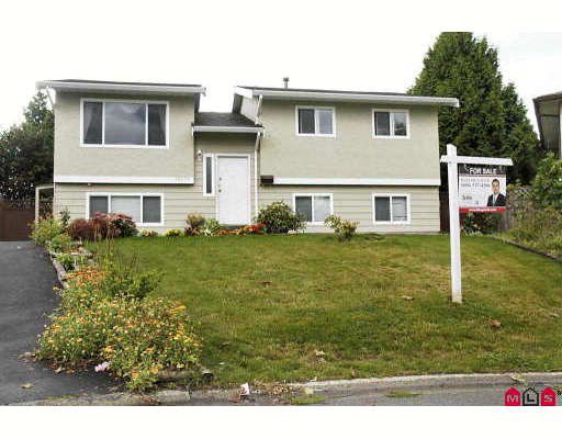 Main Photo: 13236 78A Avenue in Surrey: West Newton House for sale : MLS®# F2919874