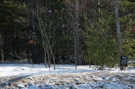 Main Photo: 7650 Birch Drive in Ramara: Freehold for sale (X17: ANTEN MILLS)  : MLS®# X1722198