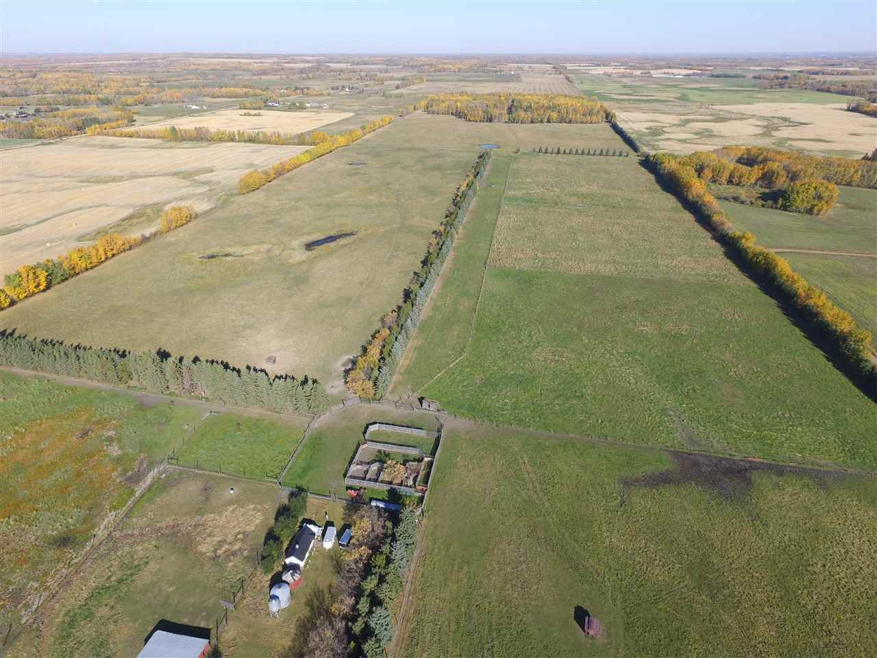 Photo 5: Photos: 273054A Hwy 13: Rural Wetaskiwin County House for sale : MLS®# E4216850