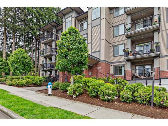 Photo 21: Photos: #402 33898 Pine St. in Abbotsford: Central Abbotsford Condo for rent