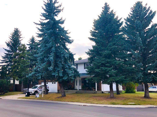 Main Photo: 540 WAHSTAO Road in Edmonton: Zone 22 House for sale : MLS®# E4215640