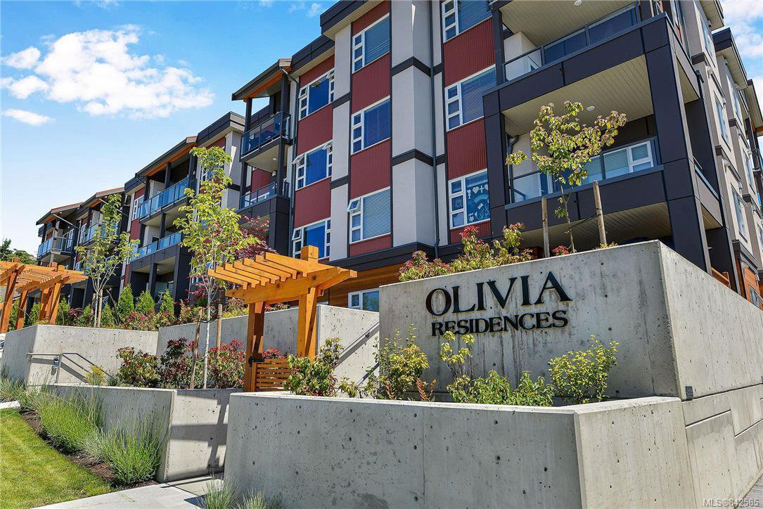 Welcome to The Olivia