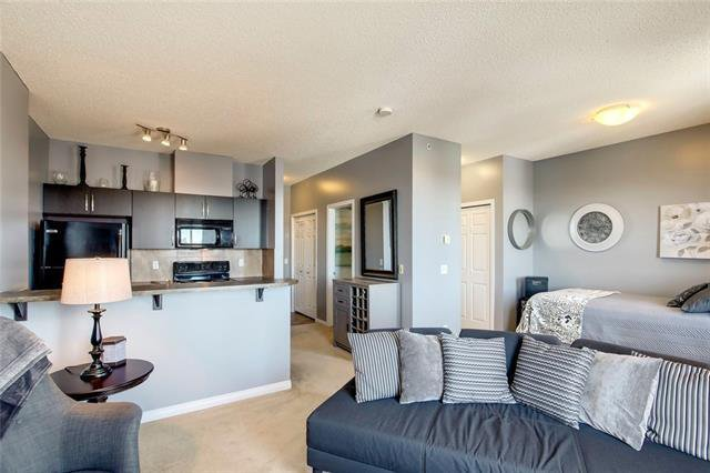 Main Photo: 417 1727 54 Street SE in Calgary: Penbrooke Meadows Apartment for sale : MLS®# C4290502