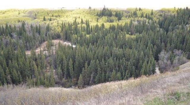 Main Photo: 163+/- Near Trochu: Rural Kneehill County Land for sale : MLS®# C4294134