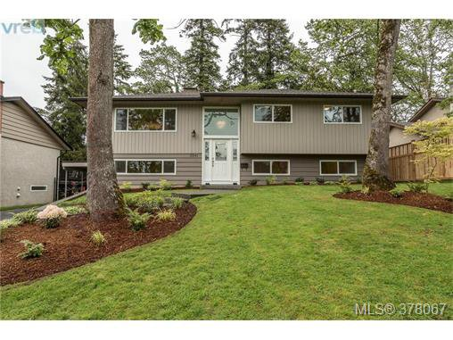 Main Photo: 3941 MARGOT Pl in VICTORIA: SE Maplewood Single Family Detached for sale (Saanich East)  : MLS®# 759177