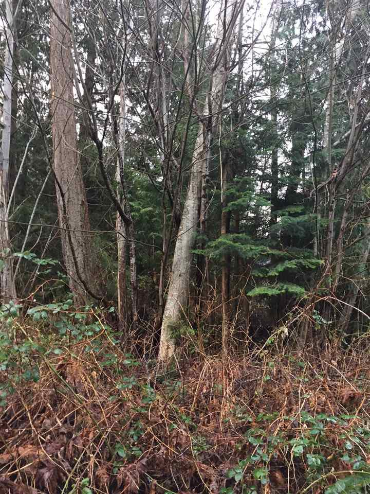 Photo 10: Photos: LOT D HEAL Road: Roberts Creek Land for sale (Sunshine Coast)  : MLS®# R2149518