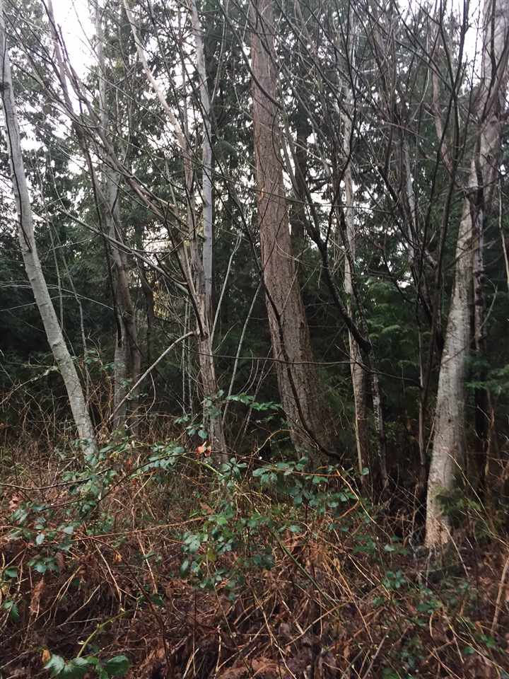 Photo 7: Photos: LOT D HEAL Road: Roberts Creek Land for sale (Sunshine Coast)  : MLS®# R2149518