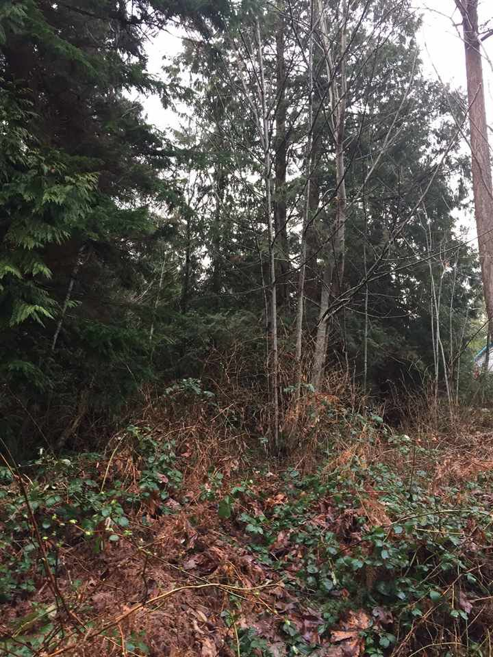 Photo 6: Photos: LOT D HEAL Road: Roberts Creek Land for sale (Sunshine Coast)  : MLS®# R2149518