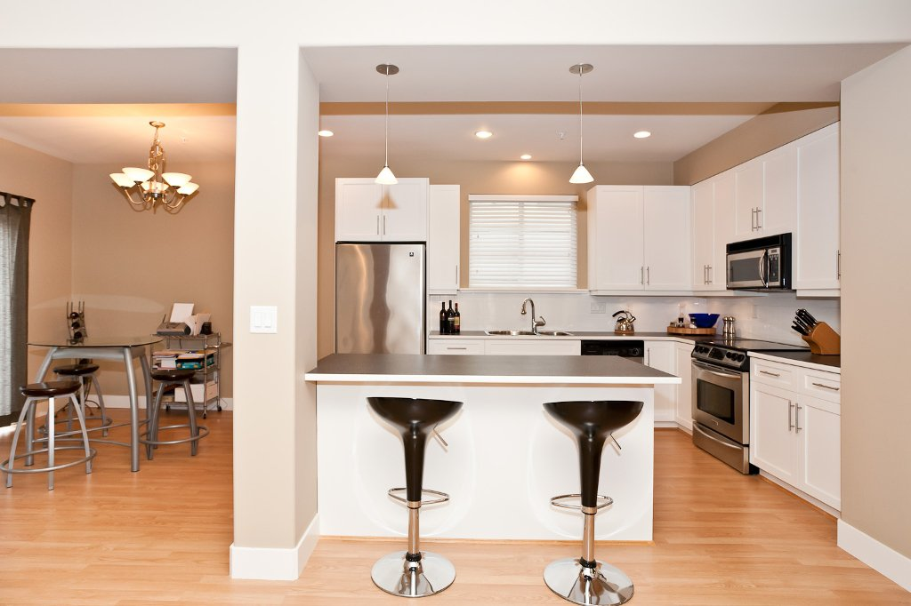 Photo 5: Photos: 1863 PITT RIVER Road in Port Coquitlam: Lower Mary Hill House for sale : MLS®# V874372