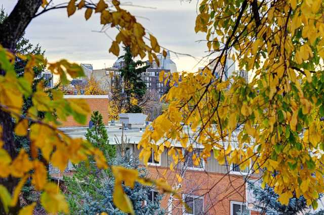 Main Photo: 376 1620 8 Avenue NW in Calgary: Briar Hill Condo for sale : MLS®# C3639953