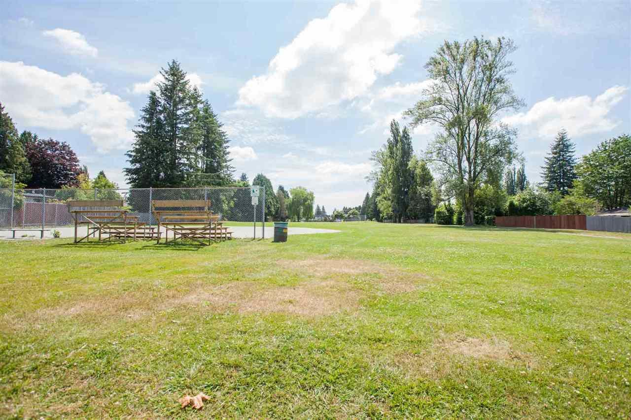"Photo 17: Photos: 11669 STEEVES Street in Maple Ridge: Southwest Maple Ridge House for sale in ""SOUTHWEST MAPLE RIDGE"" : MLS®# R2384011"