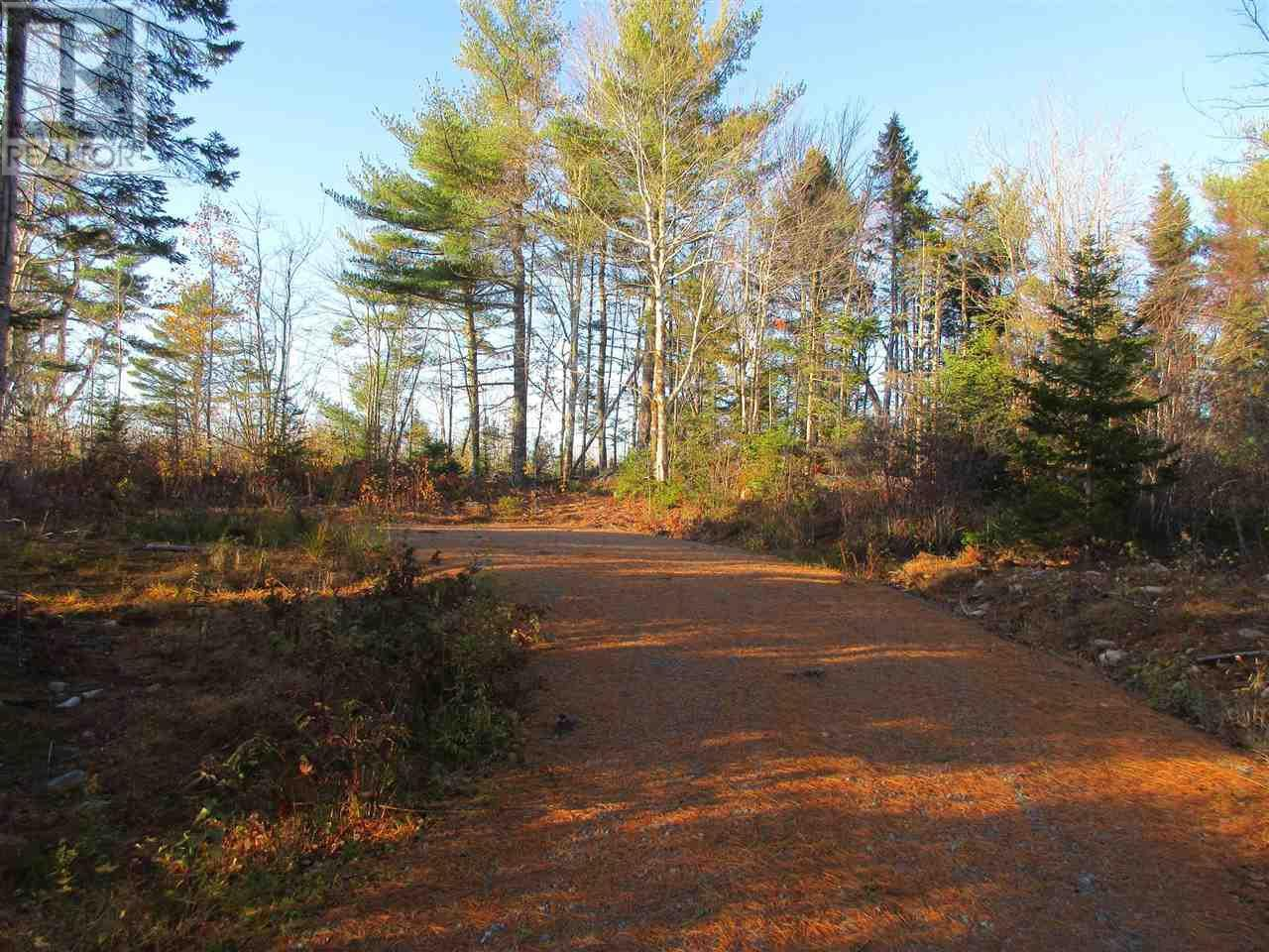 Main Photo: Lot 1P Highway 3 in Summerville: Vacant Land for sale : MLS®# 201925071