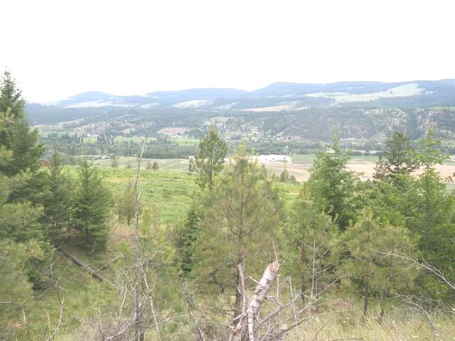 Main Photo: 6520 OLD HIGHWAY 5 in : Heffley Lots/Acreage for sale (Kamloops)  : MLS®# 135004