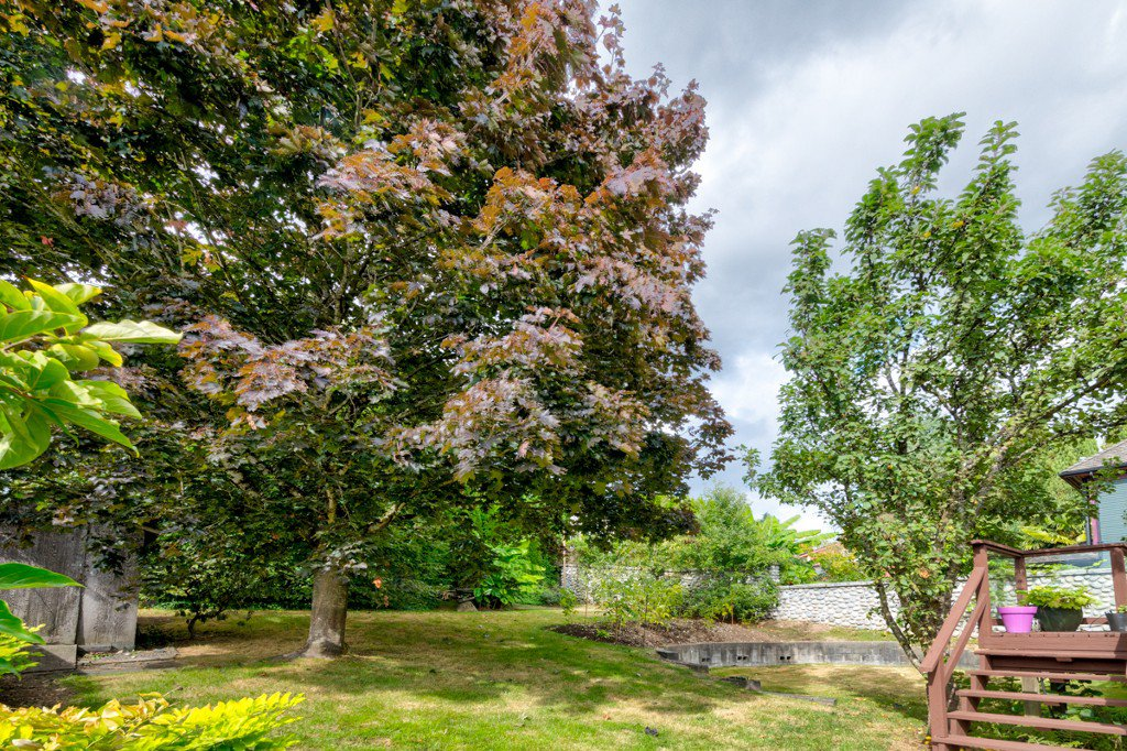 "Photo 42: Photos: 1515 NANAIMO Street in New Westminster: West End NW House for sale in ""WEST END"" : MLS®# R2208006"