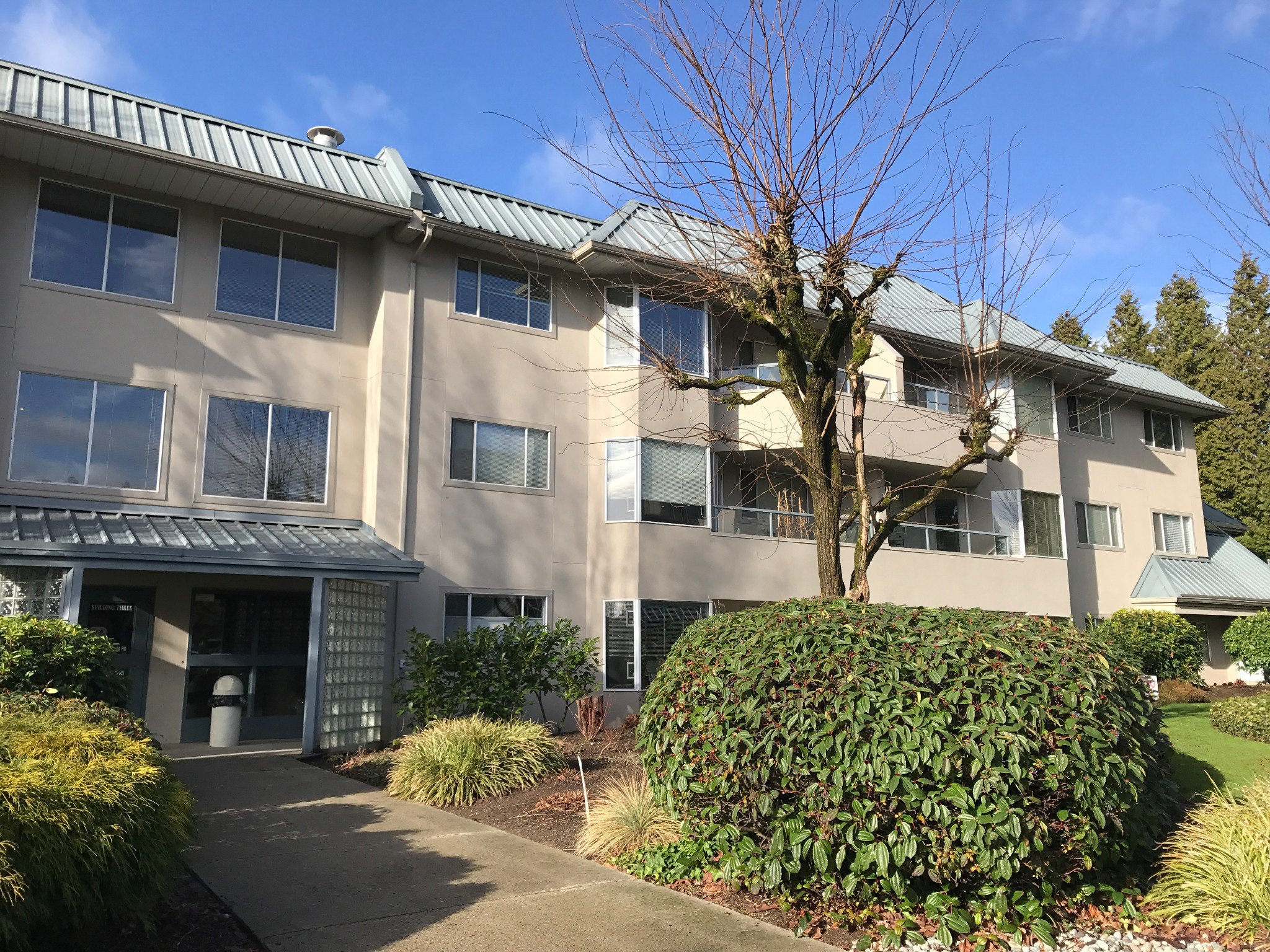 Photo 1: Photos: #329 2700 McCallum Rd. in Abbotsford: Central Abbotsford Condo for rent