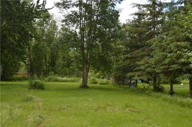 Main Photo: 2765 Maple Trail in Ramara: Brechin Property for sale : MLS®# S4318741