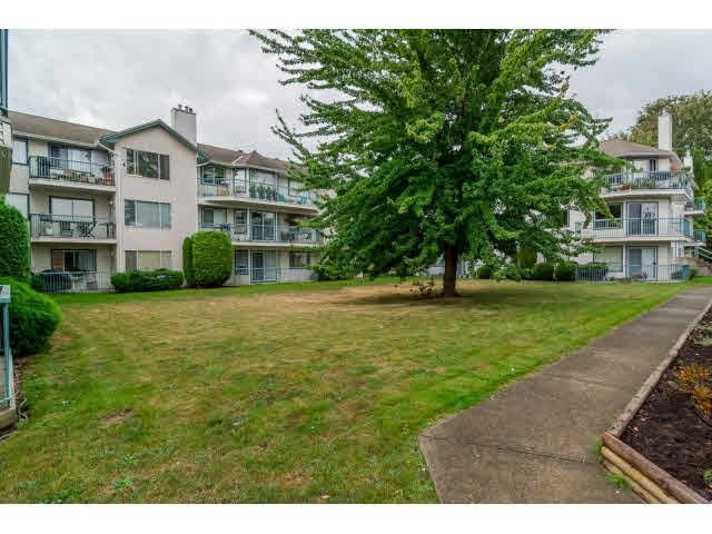 """Photo 20: Photos: 219 1755 SALTON Road in Abbotsford: Central Abbotsford Condo for sale in """"The Gateway"""" : MLS®# F1450437"""