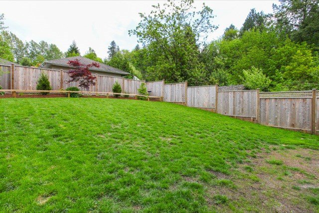 Photo 20: Photos: 10450 245 Street in Maple Ridge: Albion House for sale : MLS®# R2062622
