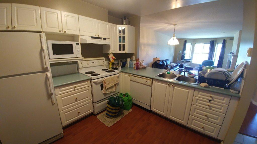 Photo 5: Photos: 313-15110 108 Ave in Surrey: Condo for rent