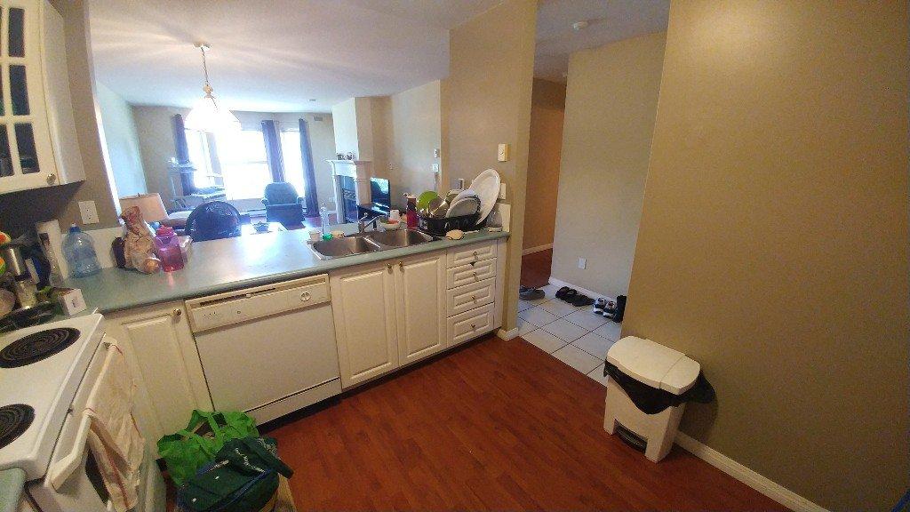 Photo 6: Photos: 313-15110 108 Ave in Surrey: Condo for rent