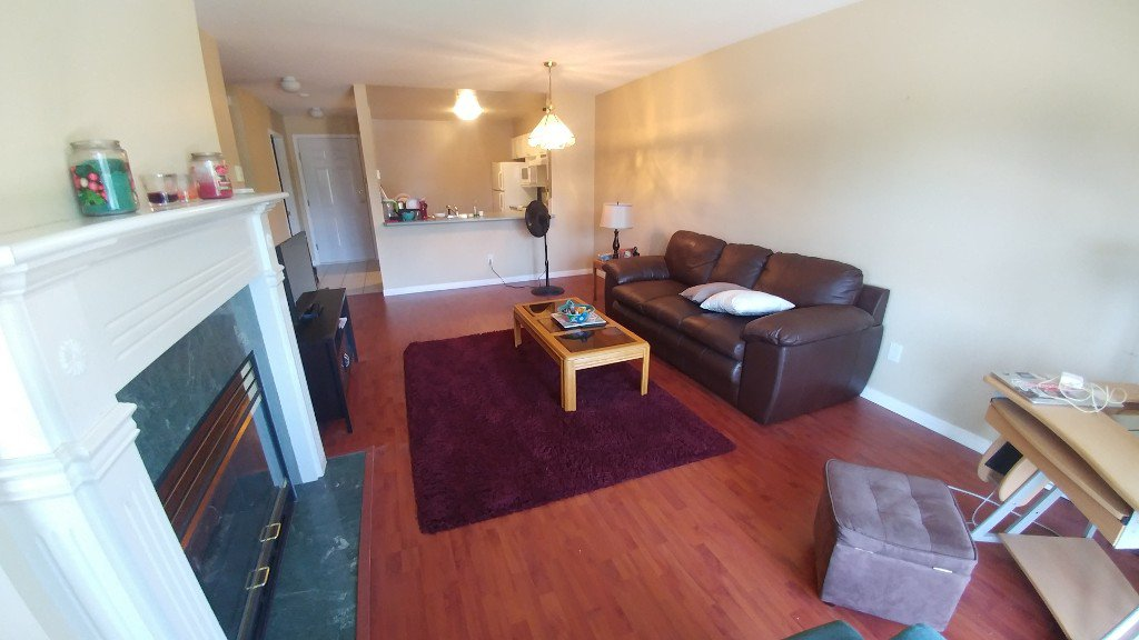 Photo 4: Photos: 313-15110 108 Ave in Surrey: Condo for rent