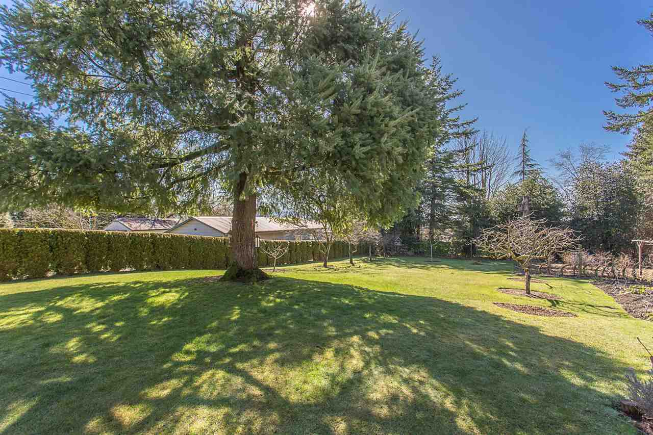 Main Photo: 29400 SUNVALLEY Crescent in Abbotsford: Aberdeen House for sale : MLS®# R2262605