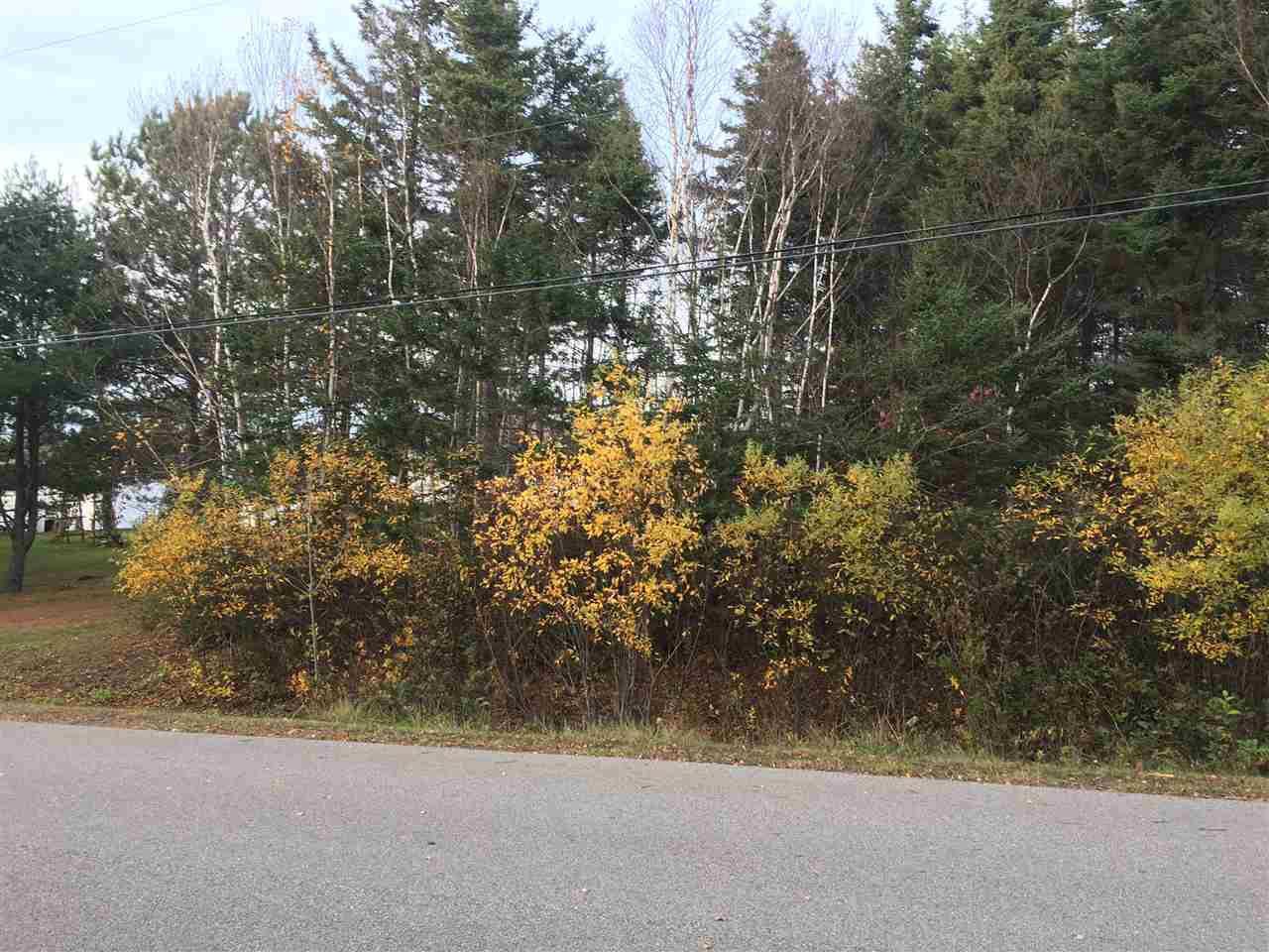 Main Photo: Lot Killkenny Lake Road in New Victoria: 203-Glace Bay Vacant Land for sale (Cape Breton)  : MLS®# 201925679