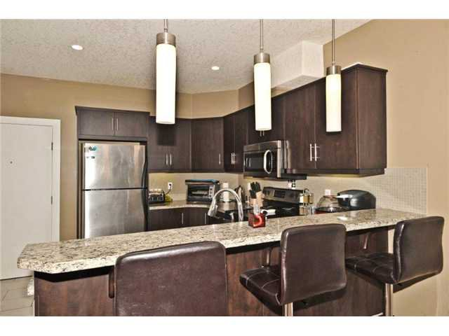 Photo 6: Photos: 103 320 12 Avenue NE in Calgary: Crescent Heights Condo for sale : MLS®# C3644558