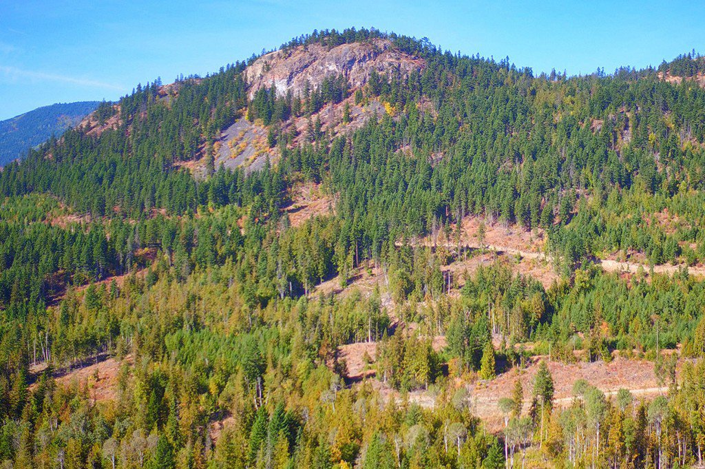 Photo 27: Photos: Lot 14 Recline Ridge Road in Tappen: Land Only for sale : MLS®# 10200569
