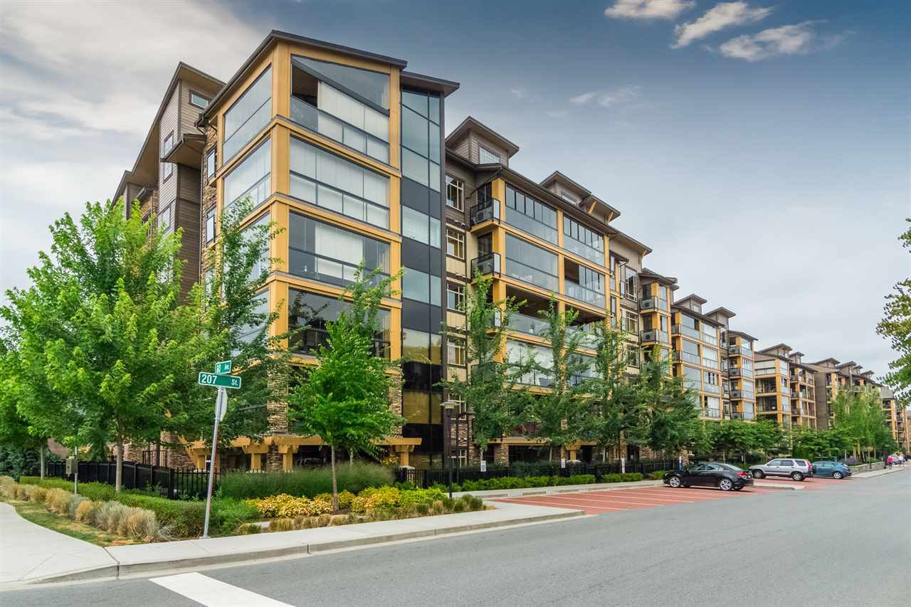"""Photo 20: Photos: 207 8067 207 Street in Langley: Willoughby Heights Condo for sale in """"Yorkson Creek - Parkside 1"""" : MLS®# R2329438"""