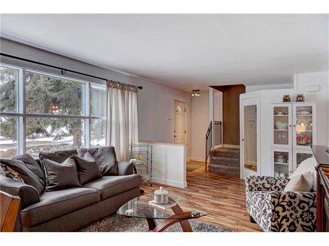 Photo 4: Photos: 684 MERRILL Drive NE in Calgary: Winston Heights/Mountview House for sale : MLS®# C4102737