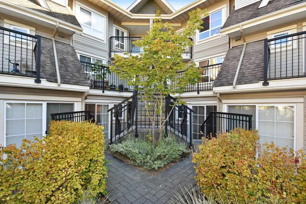 "Main Photo: 68 9339 ALBERTA Road in Richmond: McLennan North Townhouse for sale in ""TRELLAINE"" : MLS®# R2207182"