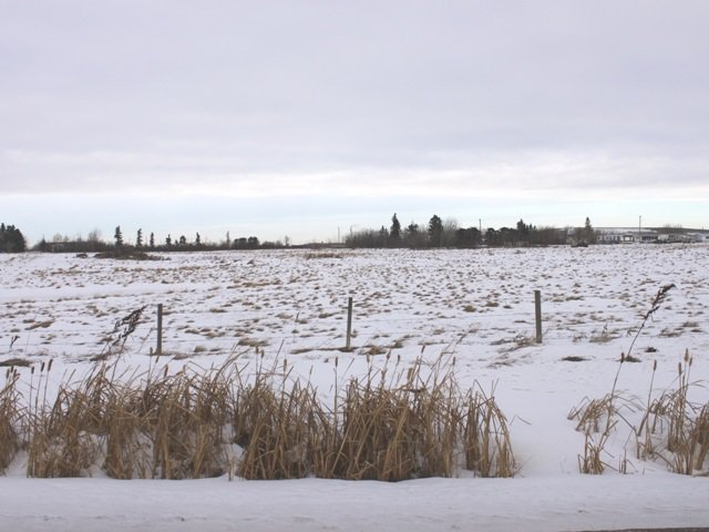 Main Photo: 50 Ave 53 Street: Ryley Vacant Lot for sale : MLS®# E4223792