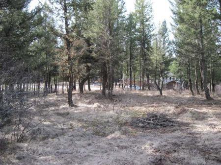 Photo 4: Photos: 2966 PIVA RD in KAMLOOPS: Land for sale (Pinantan)  : MLS®# 87272