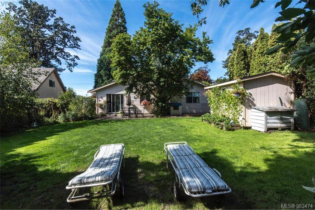 Main Photo: 4019 Malton Ave in VICTORIA: SE Mt Doug Single Family Detached for sale (Saanich East)  : MLS®# 770733