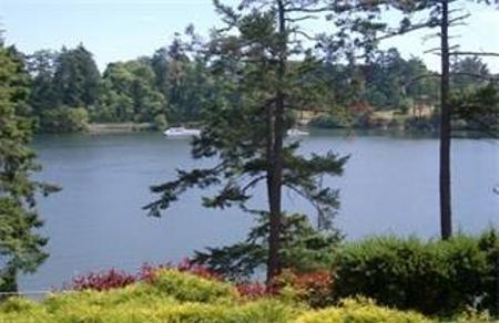 Main Photo: #106-105 Gorge Rd: Residential for sale (Burnside)  : MLS®# 258050